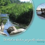 Skötsel av bäckar vid lantbruksområden - naturenlig dränering